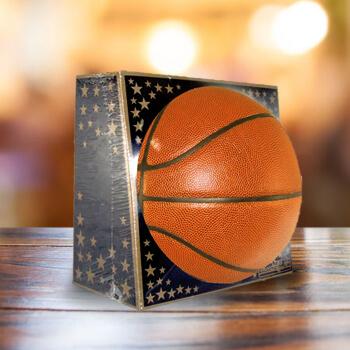 Sports Balls Accessories