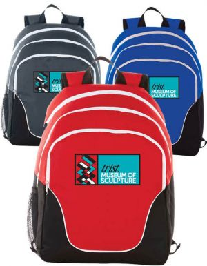 Tri 15 inch Computer Backpack