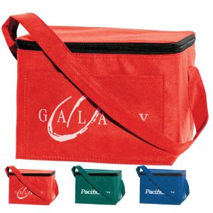 Eco Aware 6 Pack Cooler Lunch Bags