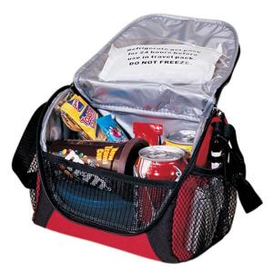 6-Pack Lunch-Cooler
