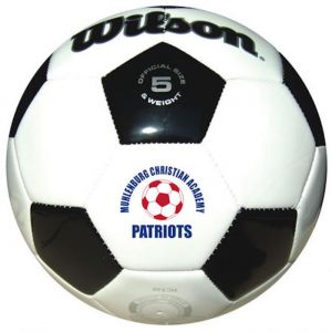 Wilson Premium Synthetic Leather Soccer Balls