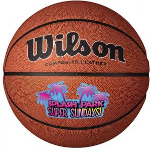 Wilson Premium Composite Leather Basketballs