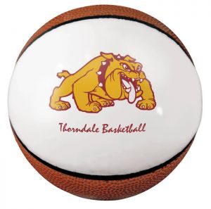 Custom Mini Signature Basketballs - 1 Panel